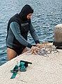 Freshly caught Octopus, Meganisi IMG 5375.jpg - panoramio.jpg