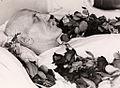 Fridtjof Nansen på likstrå, 1930.jpg