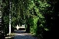 Friedhof Alt-Olvenstdedt1.JPG