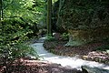 Fußweg Felsengarten Sanspareil 04082019 004.jpg