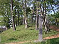Futago kofun monument.jpg