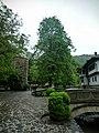 Gabrovo, Bulgaria - panoramio (12).jpg