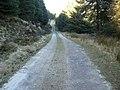 Gairletter - Stronchullin High Track - geograph.org.uk - 332855.jpg