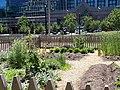 Gardens at Gibson House (2).jpg