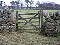 Gate and wall, Colzium - geograph.org.uk - 106529.jpg