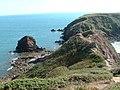 Gateholm Stack and Island - geograph.org.uk - 20651.jpg