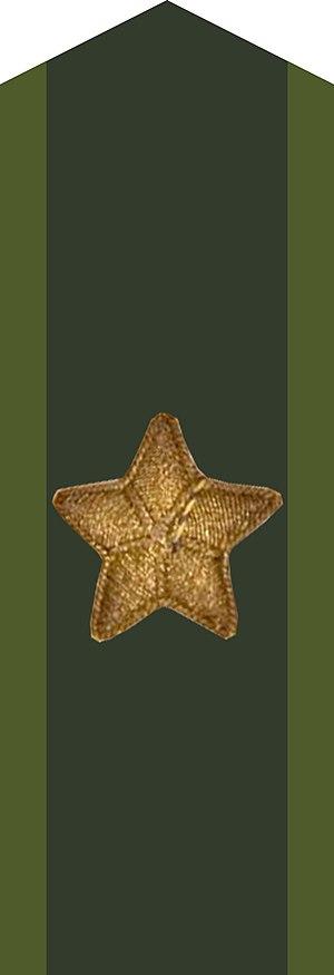 Military ranks of the Swedish Armed Forces - Image: Generalmajor kragspegel m 58 stjärna m 39