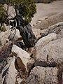 Geologic formations at Skull Rock (28453931694).jpg