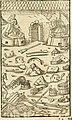 Georgii Agricolae De re metallica libri XII. qvibus officia, instrumenta, machinae, ac omnia deni ad metallicam spectantia, non modo luculentissimè describuntur, sed and per effigies, suis locis (14593810657).jpg