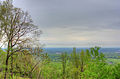 Gfp-wisconsin-rib-mountain-state-park-forest-from-the-top.jpg
