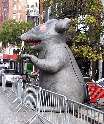 A giant inflatable rat displayed at the site o...