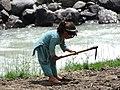 Girl at work in Pakistan.jpg