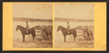 Girl on horseback in the beach, from Robert N. Dennis collection of stereoscopic views 3.png