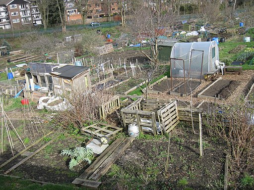 Gledhow Valley Allotments 18 March 2019 3