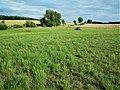 Gmina Swarzedz Landscape (2).jpg