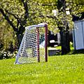 Goal! (7198207592).jpg