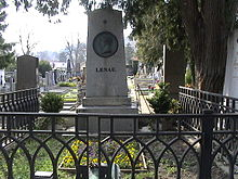 Grabmal von Nikolaus Lenau im Friedhof Weidling (Quelle: Wikimedia)