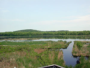 Great Meadows National Wildlife Refuge - View of Great Meadows, Concord