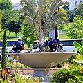 Great day to visit the Botanic Garden; USBG gardeners at work. (8961527659).jpg