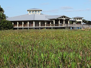 Marsh - Green Cay Wetlands, Palm Beach County, Florida