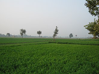 Sonipat - An agricultural area