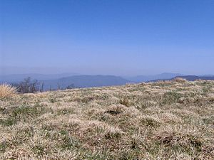 Appalachian balds - Clear vistas make grassy balds attractive to hikers