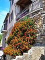 Grimaud-village-19.jpg