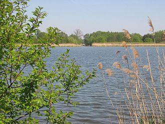 Grössinsee - Image: Groessinsee 1