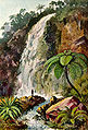 Haeckel 03.jpg
