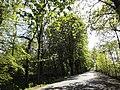 Hamm-Heessen, Hamm, Germany - panoramio (56).jpg