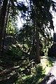 Harz Wanderung Stecklenberg - Rundweg über das Wurmtal und der Hochfläche - panoramio (1).jpg