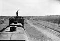 Hauling timber, Millewa district, circa 1924 (Public Domain).png