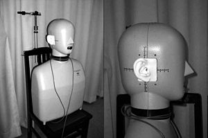 Binaural recording - Image: Head and torso simulator