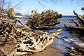Hedensted, Denmark - panoramio.jpg