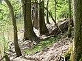Heritage Trail in FIndlay (4567378449).jpg