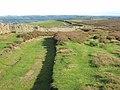 High level track above Weardale - geograph.org.uk - 268850.jpg
