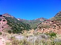 Hiking Towsley Canyon Loop (5894581857).jpg