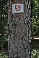 Hirschau-2986.jpg
