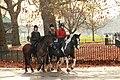 Horses and riders at Speaker's Corner, Hyde Park, 2 December 2011.jpg