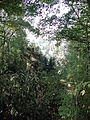 Huerth-Kriegerdenkmal-032.JPG