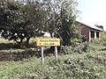 Humedal de Mabamba (Uganda) - zona junto al embarcadero 20190915 095827.jpg