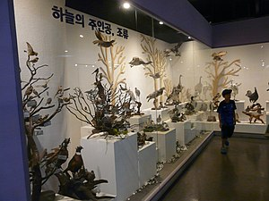 Hyehwa fall 2014 029 (Seoul National Science Museum).JPG