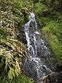 Ilha das Flores P5260047 (35877063501).jpg