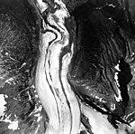 Iliamna Glacier, junction of valley glaciers, August 25, 1964 (GLACIERS 6578).jpg
