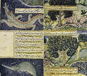 Baburnama - Illustrations in the Baburnama regarding the fauna of South Asia.