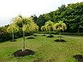 In Garden - panoramio.jpg