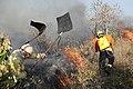 Incêndio no Parque Nacional de Brasília (36117886383).jpg