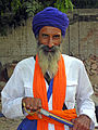 India-0420 - Flickr - archer10 (Dennis).jpg