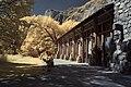 Infrared Yosemite – Ahwahnee Hotel (3936142525).jpg