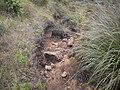 Isabeloca^ - panoramio (1).jpg